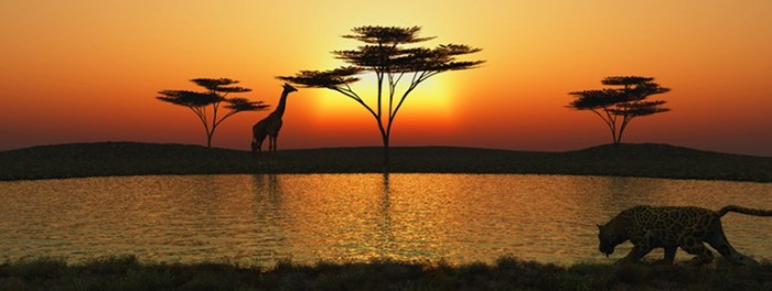 cropped-savanna-sunset-preview